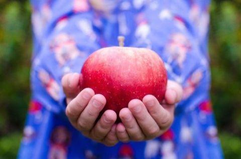 Dieta detox: in 3 giorni torni in forma