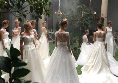 Clothing, Dress, Textile, Photograph, Bridal clothing, White, Wedding dress, Gown, Formal wear, Petal,