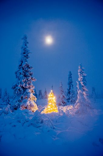 Auguri Di Natale Bellissimi.Le Piu Belle Immagini Di Natale Da Condividere