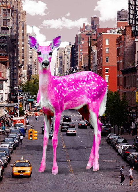 Affordable Art Fair 2016 Milano, Ronen Art Gallery, Paco Raphael: Pink Bambi