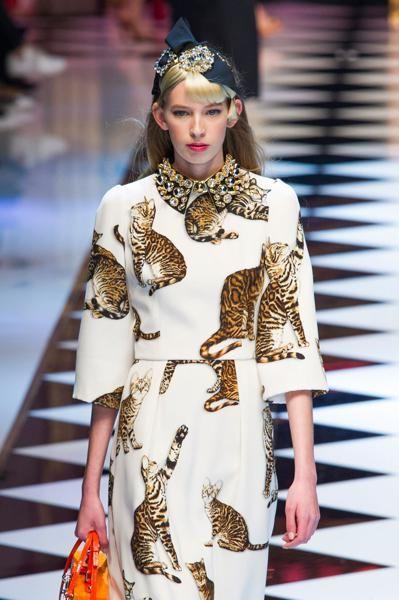 Gatti anche per la collezione da fiaba di Dolce   Gabbana. 09cba6d9195