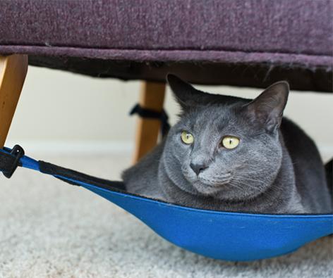 """<p>L'idea è pratica ed efficace, te la suggerisce <a href=""""http://www.catcrib.com"""" target=""""_blank"""">questa</a> pratica amaca da sedia per gatti.</p><p>Ogni arredo ha un vano sottostante che può essere sfruttato. Invece di impilare disordinatamente tutto sopra riponi quello che usi di meno nella parte sottostante di una poltroncina o del tavolino, ad esempio. Libri e riviste sono perfetti e comodi da prendere ogni che si ha voglia di leggere!</p>"""