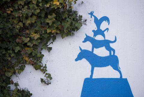 <p>Da questa tappa e per le successive cinque si può immaginare di fare un viaggio. L'itinerario si snoda tutto in Germania e parte da Brema, dove l'intera città racconta la storia dei suoi Musicanti, i quattro animali (li vedete nel murales in foto) che i fratelli Grimm immaginarono capaci di sconfiggere una banda di briganti. In particolare, il quartiere medievale di Schnoor è teatro di ricostruzioni delle vicende della fiaba.</p>