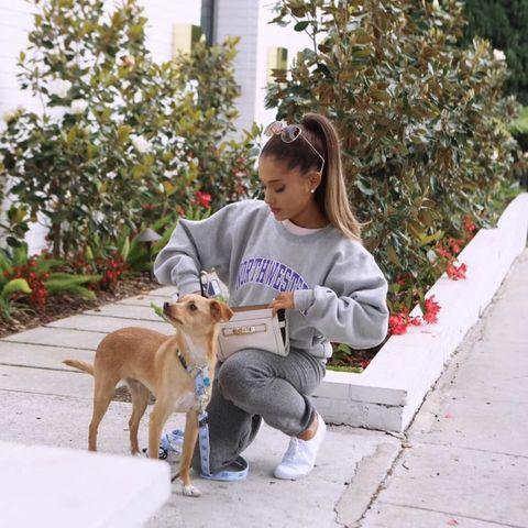 <p>Ariana ha 4 cani che si chiamano Ophelia, Coco, Toulouse e Fawkes. Era pescetariana ma è passata a un più radicale scelta vegana.</p>