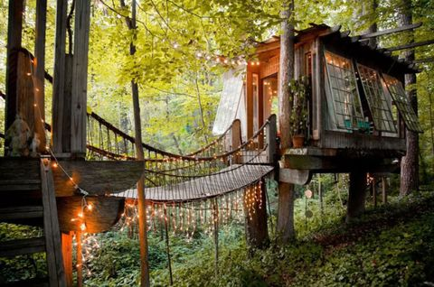 AIRBNB-Secluded Intown Treehouse