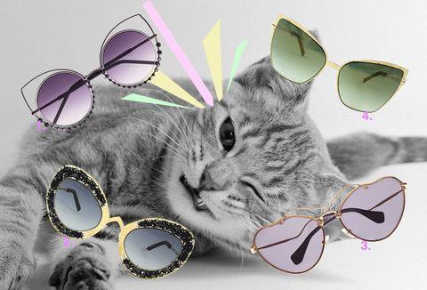 <p>1. Marc Jacobs (€ 280).</p><p>2. Pugnale&Nyleve (€ 670).</p><p>3. Miu Miu Eyewear (€ 350).</p><p>4. Pugnale&Nyleve (€ 670).</p>