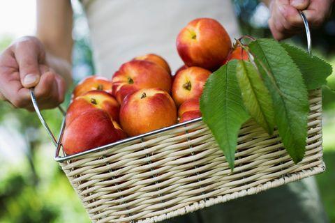 """<p>Tra le proprietà delle pesche, un frutto che si può trovare in abbondanza in questa stagione, c'è la capacità di riequilibrare gli sbalzi ormonali. Insieme alla albicocche quindi risultano molto utili per combattere tristezza e suscettibilità. Inoltre permettono di fare il pieno di <strong><a href=""""http://www.gioia.it/benessere/salute/how-to/a478/potassio-in-quali-alimenti-si-trova/"""">potassio</a></strong>, fibre e vitamine. E, se le hai già mangiate in abbondanza in macedonia e crostate, puoi provare un'insalata di quinoa con pesche, albicocche e ciliegie, fresca, colorata e veloce da preparare.</p>"""