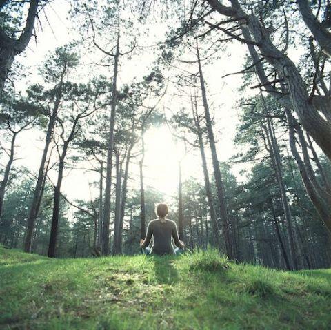 yoga bosco