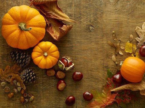 """<p>È la verdura regina dell'autunno, che fa la sua comparsa a settembre e finisce la stagione a marzo. Dolce, versatile e ricca di antiossidanti, vitamina A e betacarotene, la <strong>zucca</strong> è l'ingrediente principale di moltissime <a href=""""http://www.elle.com/it/search/ricette%2520della%2520tradizione"""">ricette tipiche regionali</a> e ha un alto potere saziante con pochissime calorie per etto.</p>"""