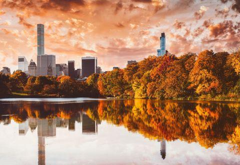 """<p>L'autunno a New York, con lo splendido foliage di <strong>Central Park</strong>, è stato raccontato al cinema da un film del 2000 con <a href=""""http://www.elle.com/it/magazine/personaggi/g1320/richard-gere-matrimoni-amori-donne-cindy-crawford/"""">Richard Gere</a> e Winona Ryder, il già citato <em>Autumn in New York</em>. Per rivivere i luoghi in cui la pellicola è stata girata basta recarsi nell'immenso parco di Manhattan, che tra ottobre e novembre cambia il suo colore attraversando le mille sfumature calde del giallo e dell'arancio.</p>"""