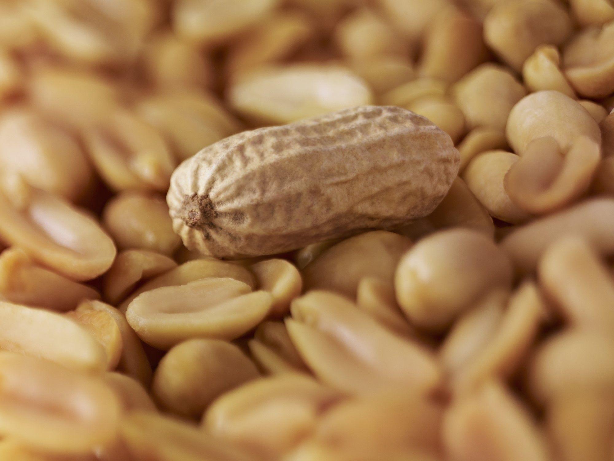 <p>Al secondo posto della black list ci sono le<strong> arachidi</strong> dalla Cina contaminate da aflatossine, e le importazioni di questo prodotto nel 2015 sono aumentate addirittura del 141%.</p>