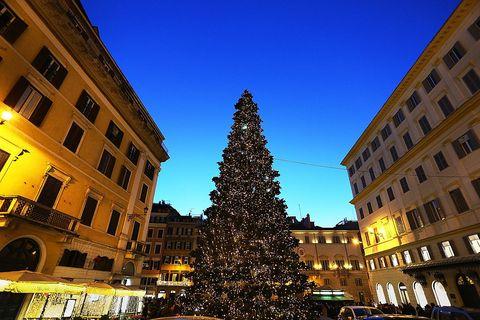 alberi di natale italia 2016