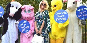Pamela Anderson in difesa degli animali