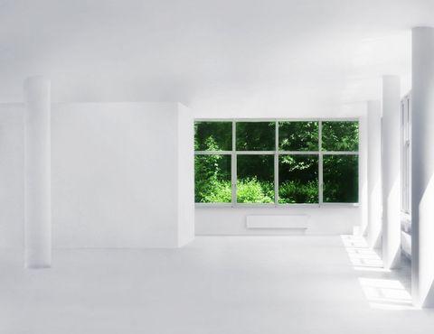 Come eliminare la muffa dai muri di casa