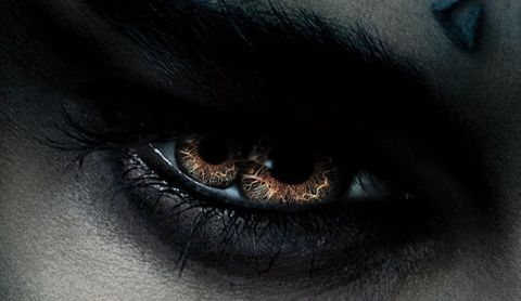 """<p>Sono tornati i mostri Universal! Si inizia con <em data-redactor-tag=""""em"""">La mummia</em> interpretata da <strong data-redactor-tag=""""strong"""">Sofia Boutella</strong>, <a href=""""http://www.gioia.it/spettacolo/film/news/a1208/sofia-boutella-star-trek-beyond/"""" data-tracking-id=""""recirc-text-link"""">vista in <em data-redactor-tag=""""em"""">Star Trek Beyond</em></a>, e con <strong data-redactor-tag=""""strong"""">Tom Cruise</strong>, ex soldato delle forze speciali, sulle sue tracce.</p><p><strong data-redactor-tag=""""strong"""">Quando</strong>: 8 giugno 2017</p>"""