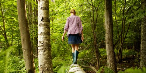 Nature, Leg, Sleeve, Human body, Outerwear, Human leg, Tree, Denim, People in nature, Forest,