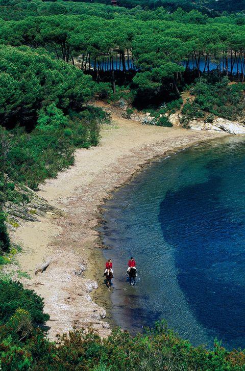 """<p>La<strong data-redactor-tag=""""strong"""" data-verified=""""redactor""""> spiaggia di &nbsp;Calanova</strong>, sul versante orientale di Copoliveri, è fuori dalle rotte più comuni e per questo risulta essere molto affascinante. Racchiusa tra due piccole punte ricoperte di vegetazione è una spiaggia di sabbia e sassolini lunga un'ottantina di metri.</p>"""