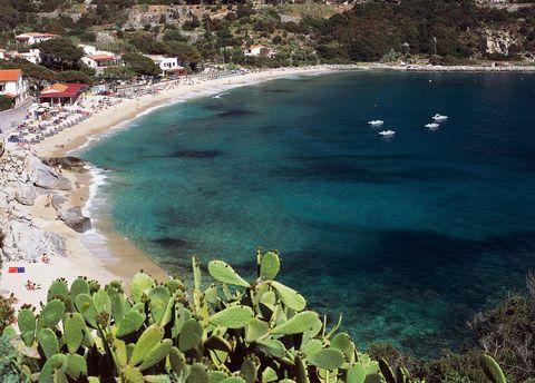 """<p>Non c'entrano i cavoli come verdura, ma il nome deriva dal latino e indica delle antiche cave di rocce della famiglia del granito. Al contrario di quella di Calanova, la<strong data-redactor-tag=""""strong"""" data-verified=""""redactor""""> spiaggia di Cavoli</strong>&nbsp;è tra le&nbsp;più note dell'isola d'Elba, a circa 5 km da Marina di Campi. Se ci andate, non dimenticate di visitare&nbsp;la Grotta Azzurra, a circa 600 metri dalla baia, raggiungibile con i pedalò e con piccole imbarcazioni.</p>"""