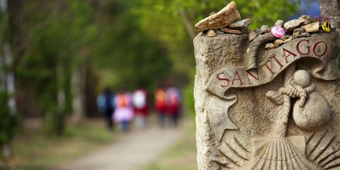 Tree, Carving, Sculpture, Trunk, Spring, Stone carving, Wood, Plant, Art, Statue,
