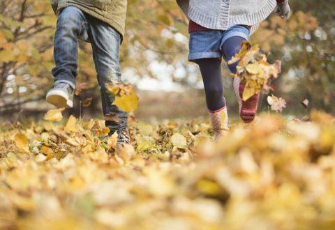 Allergie in autunno, come stare meglio grazie alle cure dolci