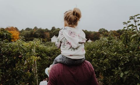 Child, Botany, Fun, Grass, Tree, Toddler, Adaptation, Plant, Photography, Happy,