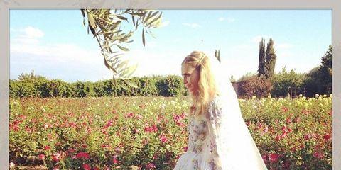 Clothing, Petal, Dress, Textile, Photograph, Flower, Bridal clothing, Gown, Wedding dress, Bridal veil,