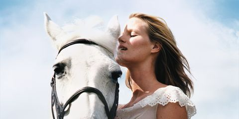 Bridle, Halter, Horse, Horse supplies, Working animal, Horse tack, Mammal, Rein, Jaw, Beauty,