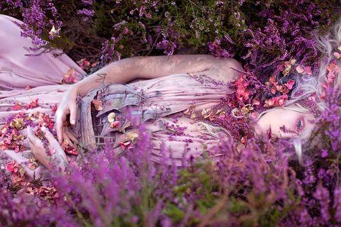 Plant, Purple, Lavender, Flower, Pink, Petal, Violet, Beauty, People in nature, Shrub,