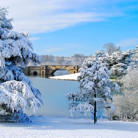 Winter, Blue, Branch, Freezing, Natural landscape, Snow, Twig, Frost, Precipitation, Ice,