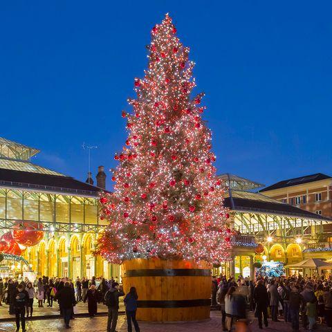 London's most beautiful Christmas trees