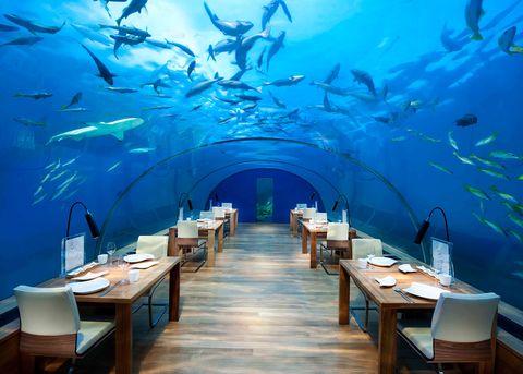 Ithaa, Maldives