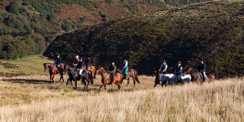Human, Mountainous landforms, Bridle, Horse supplies, Hill, Highland, Rein, Slope, Horse tack, Grassland,