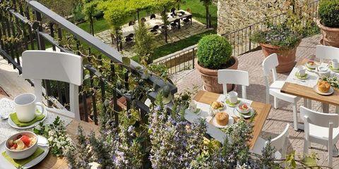 Plant, Serveware, House, Garden, Dishware, Flowerpot, Outdoor table, Outdoor furniture, Yard, Backyard,