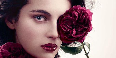 Petal, Red, Flower, Beauty, Flowering plant, Rose family, Rose order, Eyelash, Garden roses, Cut flowers,