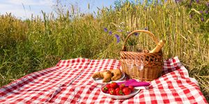 Strawberry and champagne picnic