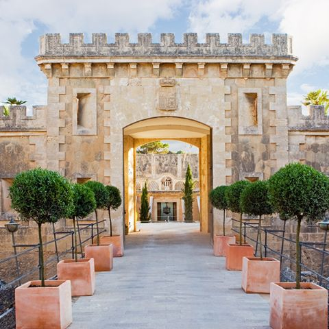 Arch, Shrub, Symmetry, Historic site, Medieval architecture, Gate, Arcade, Hacienda,