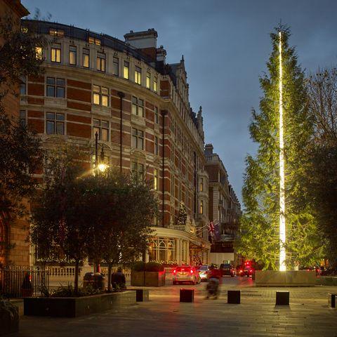 Lighting, Town, City, Woody plant, Landmark, Facade, Mixed-use, Street, Metropolitan area, Street light,