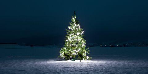 Charity at Christmas