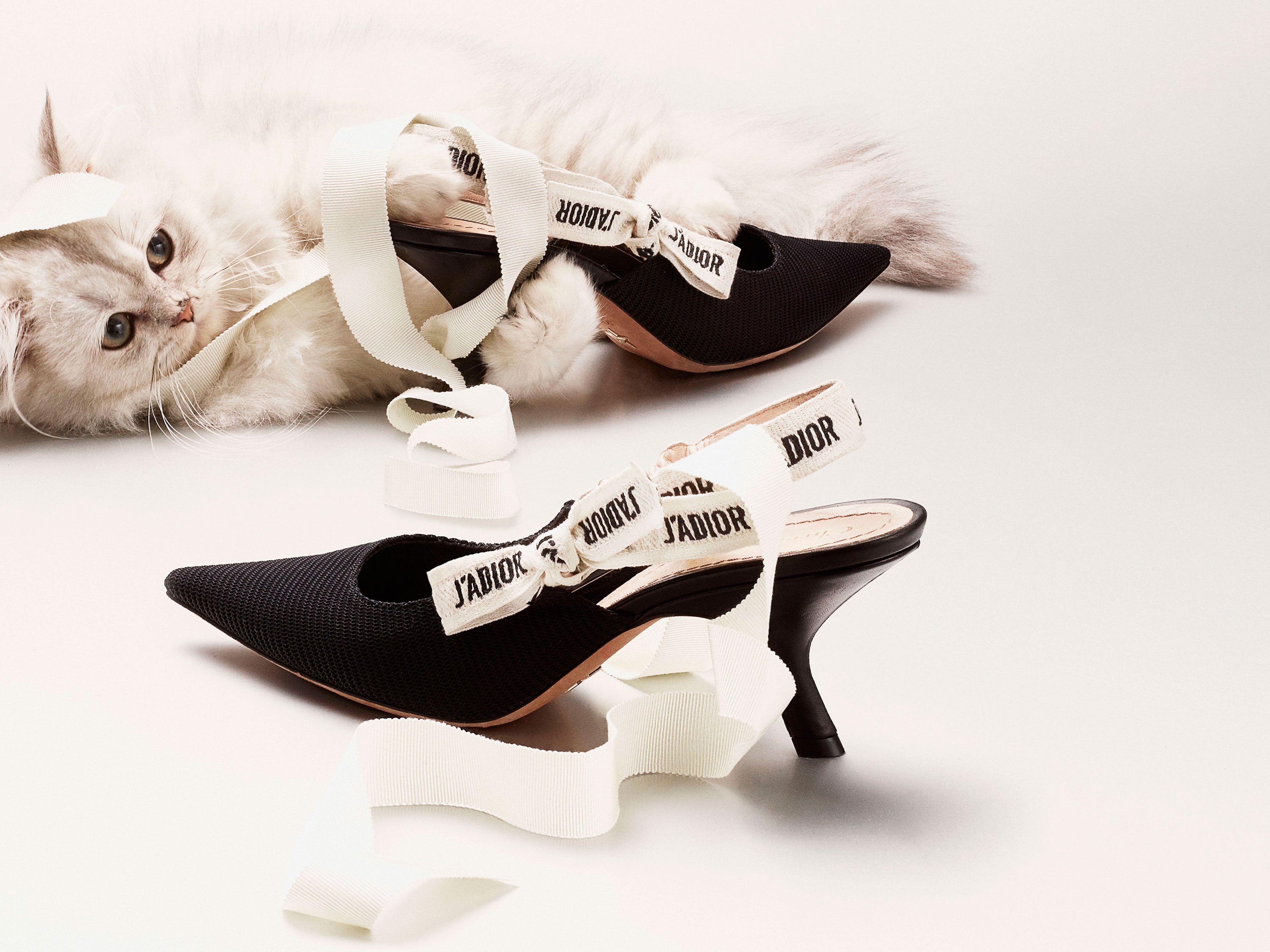 4a780bb5f27 Kitten heels return for spring summer jpg 4000x3000 Dior kitten heels