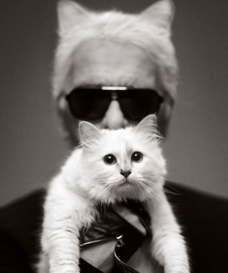You Can Live Like Choupette For A Day In The New Karl Lagerfeld Game