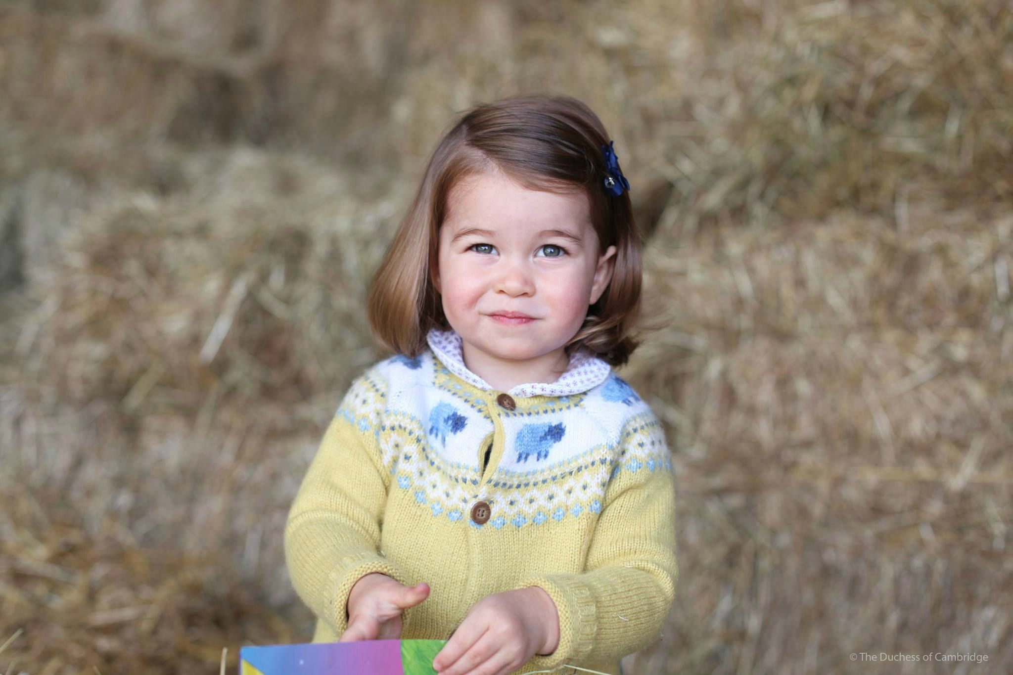 Princess Charlotte's John Lewis cardigan is a sell out