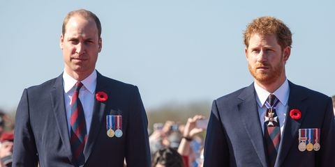 Prince William and Prince Harry let Diana down