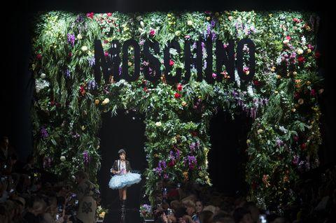Purple, Flower, Plant, Botany, Tree, Leaf, Spring, Shrub, Architecture, Garden,