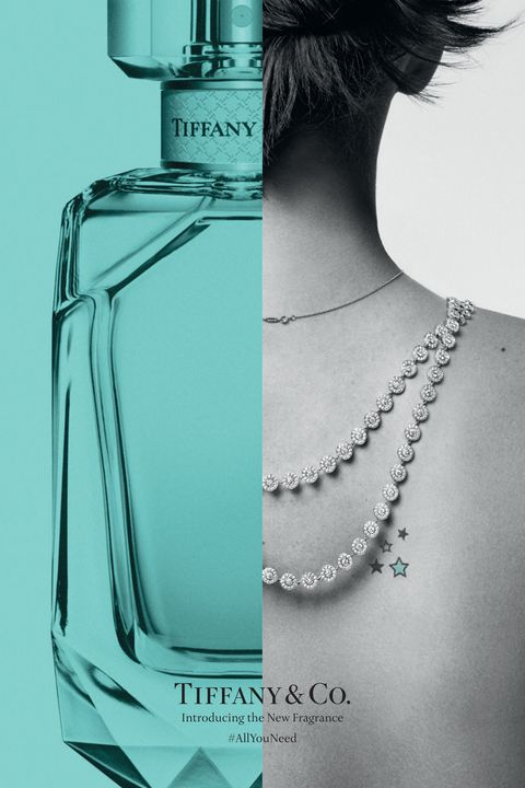 532d9c0a8 The newest Tiffany & Co. masterpiece is within your price range