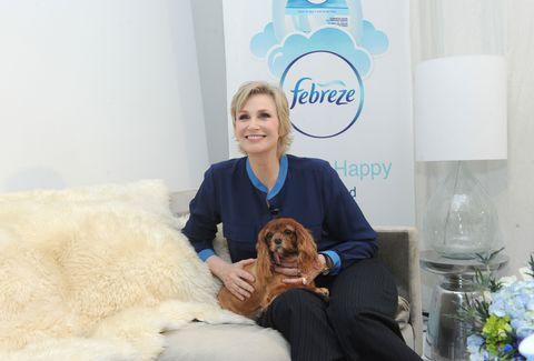 Human, Blue, Logo, Dog breed, Carnivore, Fur, Aqua, Companion dog, Bouquet, Sporting Group,