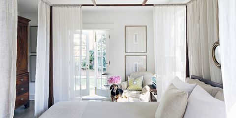 26 Stunning Designer Rooms Made Even Better With Pets