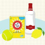 Bottle, Drinkware, Fruit, Drink, Glass bottle, Distilled beverage, Circle, Illustration, Graphics, Liqueur,