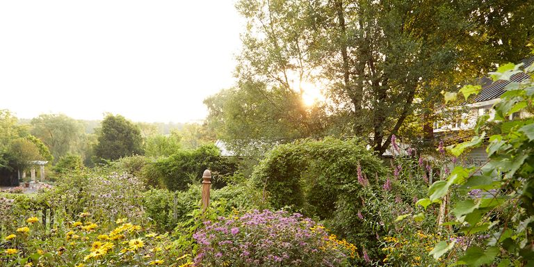 From Sprawling Paths To Simple Patios Find The Best Look For Your Backyard With These Gorgeous Garden Designs