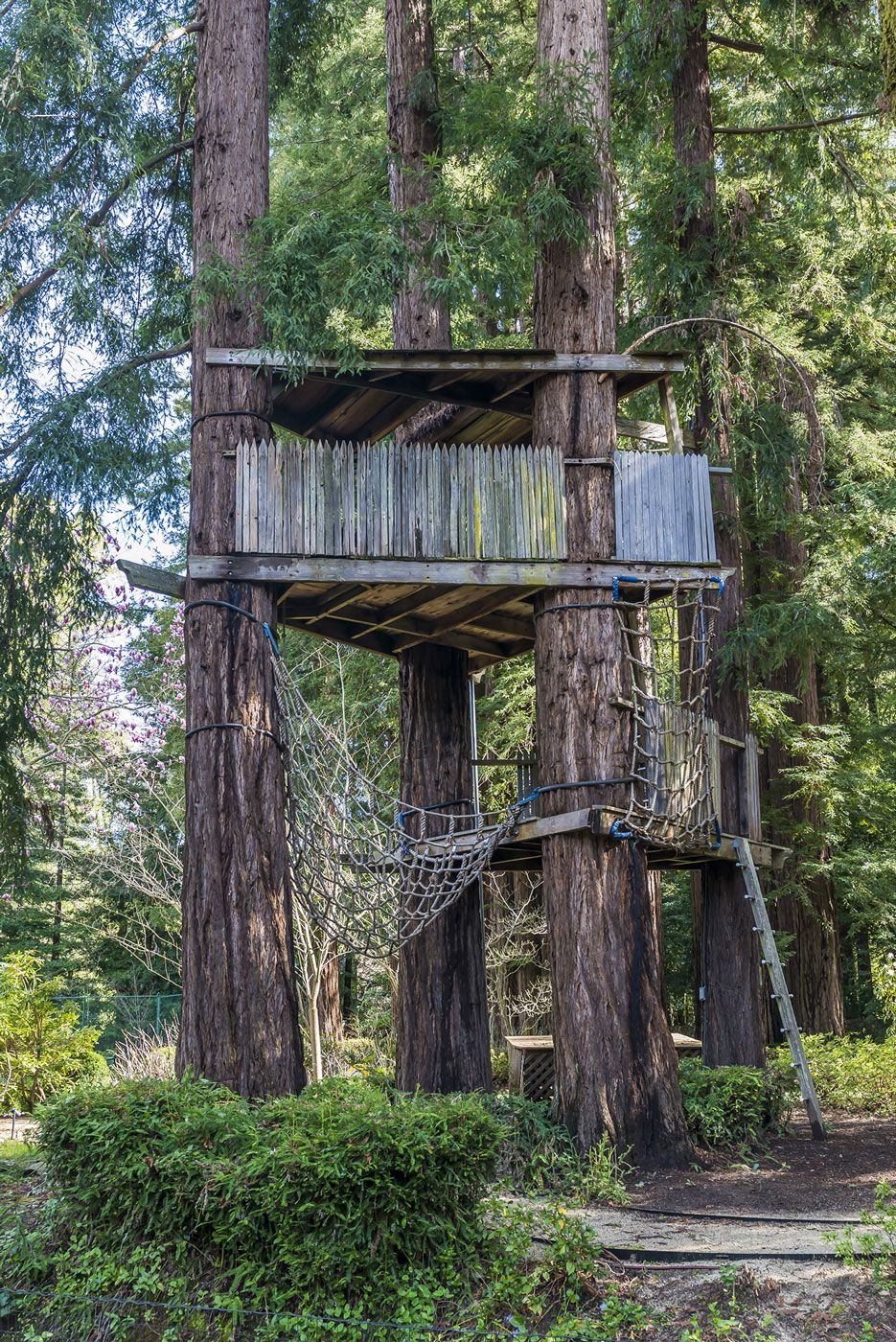 best treehouses amazing tree house vacations