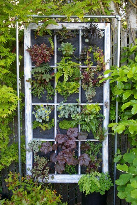 Fixture, Flowerpot, Annual plant, Houseplant, Vascular plant, Ivy family,